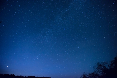 Beautiful blue night sky with many stars above the forest. Milkway space background