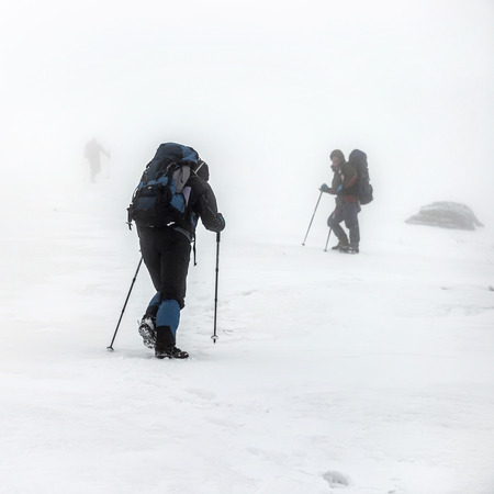 snow climbing: Mountain hiking group with backpacks and trekking poles having hard climbing trip in winter snow storm Stock Photo