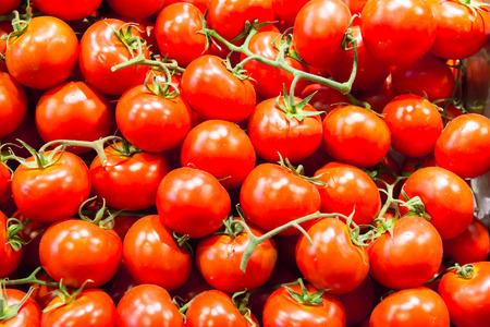 farm market: Many red tomatoes at the farm market