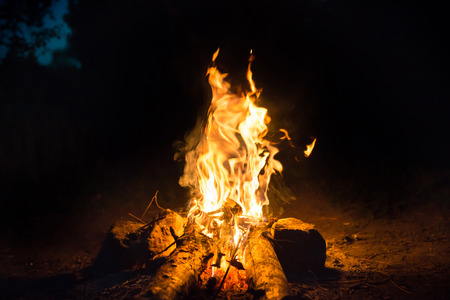 Bonfire near water in forest at night Stockfoto - 107641859
