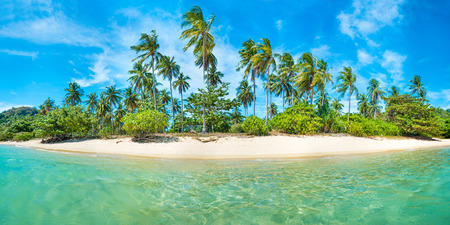 Panorama of beautiful beach on paradise tropical island with coconut palm trees, white sand and blue sea