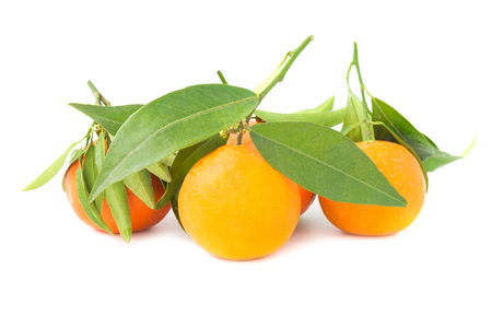 Group of orange mandarins with green leaves isolated on white background