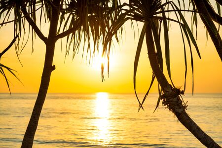 Beautiful landscape with sunset at tropical beach with palm trees Stockfoto