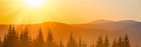 Panorama of sunset in the mountains landscape with forest and big shining sun