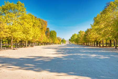 Empty Tuileries Garden park in Paris with no walking people during quarantine coronavirus at summer day. Paris, France