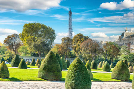 Beautiful green lawn and trimmed bushes at sunny day. Paris, France Banque d'images