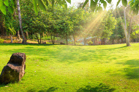 Tropical landscape with green lawn, trees and house at sunny day. Erawan National park, Thailand