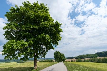 bohemia: South Bohemian landscape in summer Tel South Bohemia Czech Republic. Stock Photo