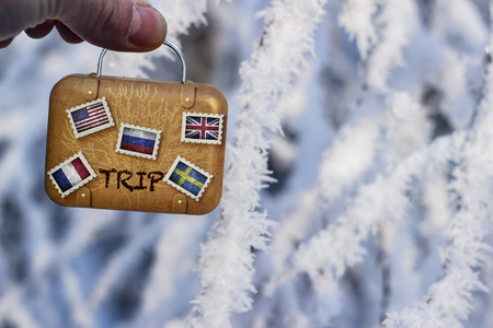 Miniature suitcase with flags on the background of snow-covered trees Stockfoto