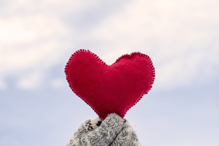 Girl holding a soft heart 版權商用圖片