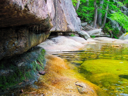 trickling: Water trickling off rocks in the forest