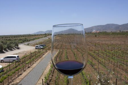 Effect of refraction in glass containing red wine in an open-air wrestling towards the mountains, road and fields planted with vines