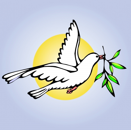 white dove on the background of blue sky and sun Vector