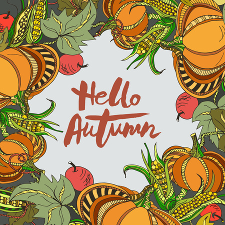 Handwritten lettering Hello Autumn with pumpkins isolated on background. Lettering for Warm Season card, shop, logo, badge, postcard, poster, banner, web. Vector illustration.