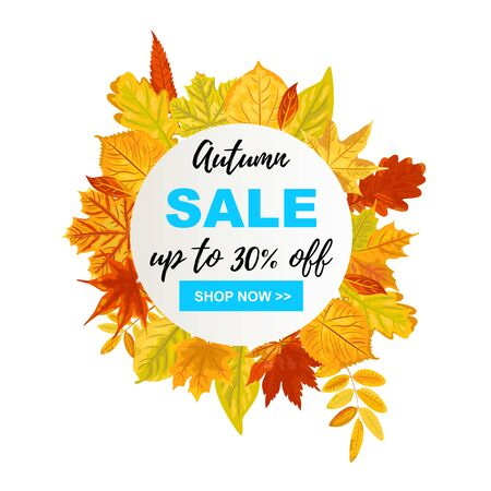 Autumn sale banner with falling leaves. Place for text. Template for fall festival, poster, web, invitation, flyer, thanksgiving. Illustration