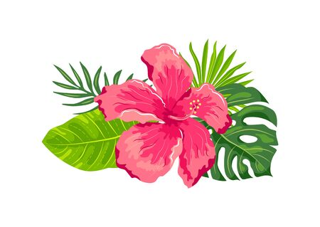 Tropical exotic leaves, hibiscus flower, vector illustration on white background. Design element for poster, web, flyers, invitation, postcard, t-shirt, SPA wedding sticker