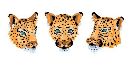 Leopard, wild cat faces set for pattern, design, t-shirt print, sticker. Vector illustration on white background. 일러스트