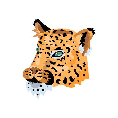 Leopard, wild cat face for pattern, design, t-shirt print, sticker. Vector illustration on white background. 일러스트