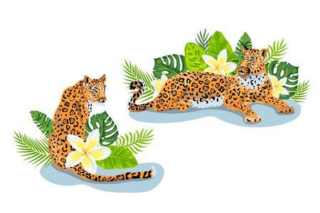 Leopards, jaguar with tropical leaves, plumeria, exotic flower. Design for flyer, poster, t-shirt print, invites, sticker. Vector illustration set on white background.