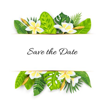 Backdrop with jungle leaves, tropical flower plumeria. Vector illustration summer templates. Place for text. Great for SPA flyer, beauty offer, wedding, poster, baby shower, bridal shower.