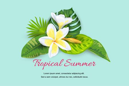 Jungle leaves with tropical flower plumeria. Hello summer banner. Place for text. Vector illustration for web, SPA flyer, poster, sale, party invitation, beauty offer, wedding, bridal shower.