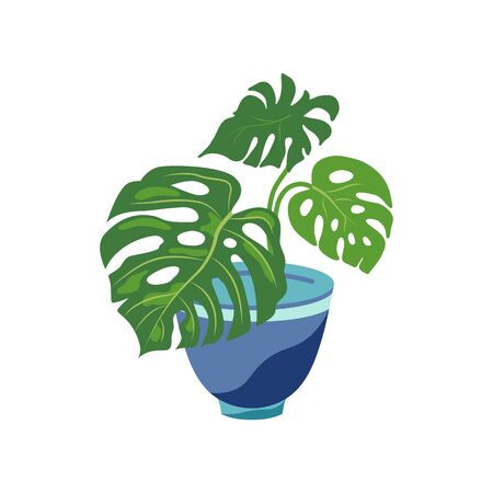 Potted plant mostera for urban jungle, green home decor. Flat cartoon style design. Vector illustration isolated on white background.