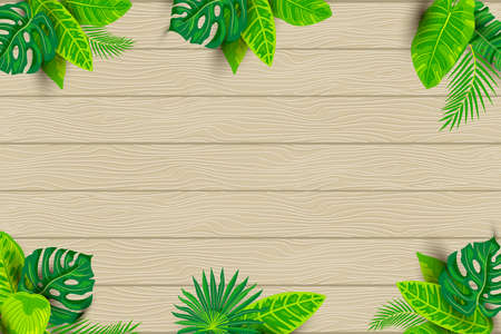 Green summer tropical background, exotic leaves on textured wood background. Place for text. Vector illustration for poster, web, flyer, party invitation, ecological concept, sesonal sale. Ilustrace
