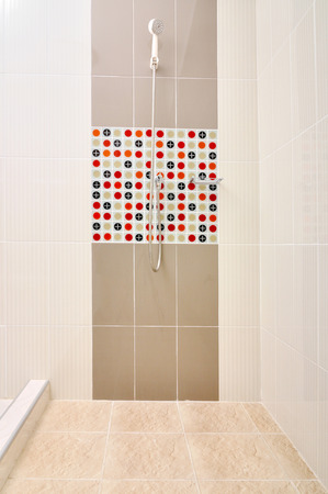 Bathroom Shower with designed tiles photo