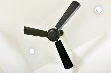 fan ceiling: four blades black ceiling fan on designed ceiling