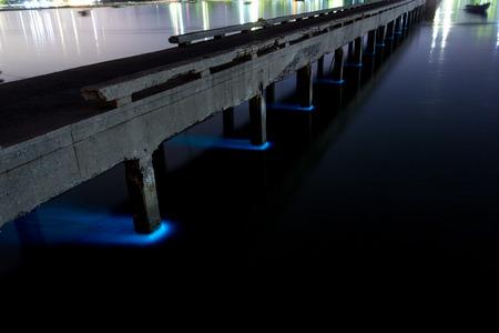 plankton: Floraci�n de plancton, Sriracha, Chonburi, Tailandia: Plancton floraci�n en la explosi�n Phra mar, 10 de agosto de 2015. El plancton floraci�n conducen a fluorescencia de mar y peces muertes por bajos niveles de ox�geno en la contaminaci�n del mar y de agua