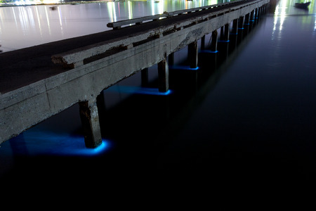 Plankton bloom, Sriracha, Chonburi, Thailand : Plankton bloom at Bang Phra sea, Aug 10, 2015.  Plankton bloom conduce to fluoresce sea and fish deaths from low oxygen in the sea and Water pollution