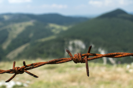 Segment of rusty barbed wire on natural background