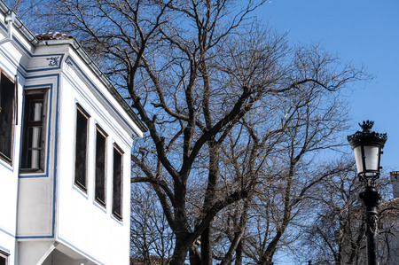 old town house: Old town house and winter tree on blue sky background