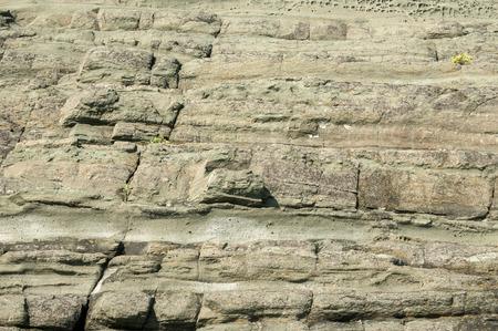 surface closeup: Sea rock surface closeup detail as background Stock Photo
