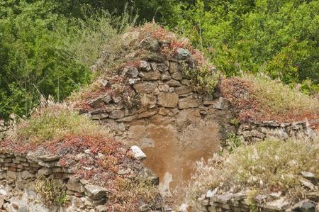 remnants: Remnants of demolished abandoned medieval church in forest