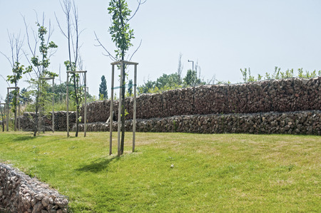 gabion mesh: Saplings on park meadow and hexagonal wire netting gabion box wall with stones