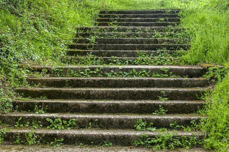 Old abandoned stone staircase in park in springtime