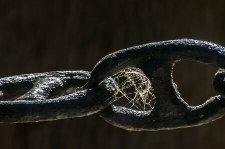 Thick iron black chain links fence closeup with spider web on dark background