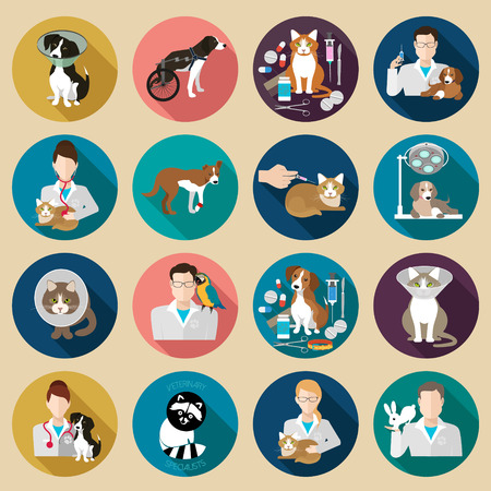 veterinary icon: Veterinary icon flat set.  Vet clinic, pets and doctor isolated on background. illustration