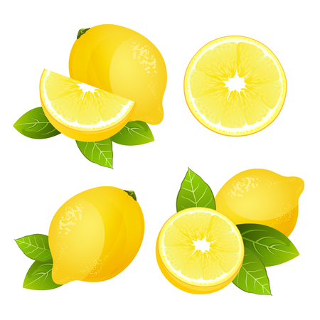 Fresh lemon fruit slice set. Collection of realistic juicy citrus with leaves illustration isolated on white background