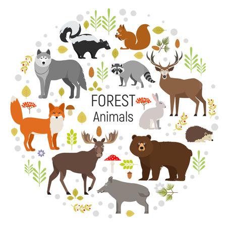 Conjunto de animales del bosque en un círculo aislado en el fondo blanco. Ilustración del vector. Alces, jabalíes, oso, zorro, conejo, lobo, zorrillo, mapache, venado hendgehog ardilla