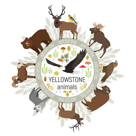 aigle royal: Cercle modèle de vecteur des animaux du parc national de Yellowstone grizzly, l'orignal, le wapiti, l'ours, le loup, l'aigle royal, le bison, le mouflon d'Amérique, aigle chauve, tanager ouest, isolé sur fond transparent Illustration