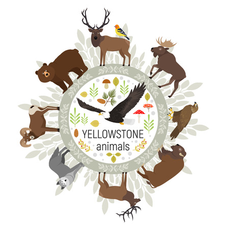 Circle vector template of Yellowstone National Park animals grizzly, moose, elk, bear, wolf, golden eagle, bison, bighorn sheep, bald eagle, western tanager, isolated on transparent background