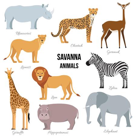 African animals of savanna elephant, rhino, giraffe, cheetah, zebra, lion, hippo isolated. Vector illustration