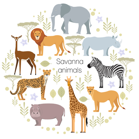 African animals elephant, rhino, giraffe, cheetah, zebra, lion, hippo isolated. Savanna. Safari vector illustration