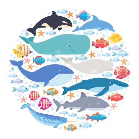 Mamíferos marinhos e peixes em círculo. Narval, baleia azul, golfinho, baleia beluga, baleia-jubarte, arco-íris e vetor de baleia cachalote isolado Ilustración de vector