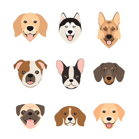 Flat style dog head icons. Cartoon dogs faces set. Vector illustration isolated on white