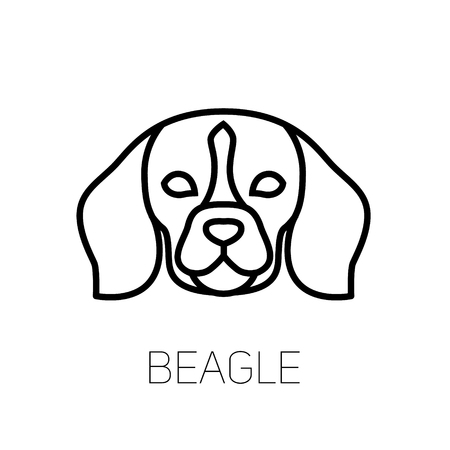 Beagle linear face icon. Isolated outline dog head vector