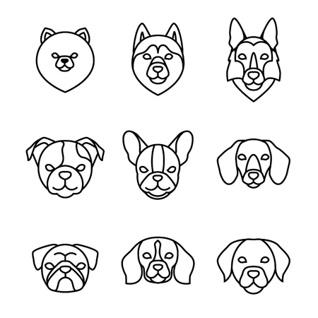 Dogs breeds linear icon set. Pomeranian spitz, Pug, Husky, Dachshund, Beagle, German Shepherd, Labrador, French, English bulldog. Isolated vector line dog heads