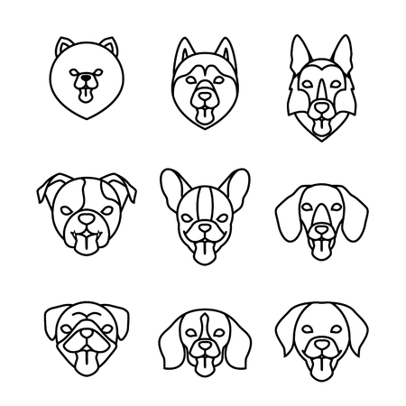 Dogs breeds linear icon set. Pomeranian spitz, Pug, Husky, Dachshund, Beagle, German Shepherd, Labrador, French, English bulldog. Isolated vector outline dog heads with tongues Illustration